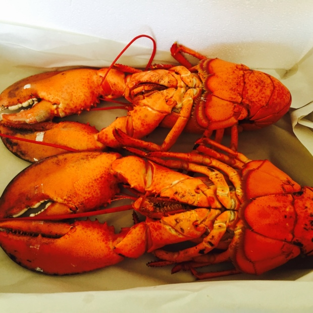 I'm pretty sure the abundant lobsters in the region lend some inspiration