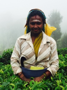 Tea picker, Haputale