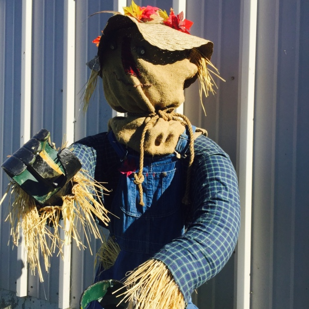 It's scarecrow season in Nova Scotia