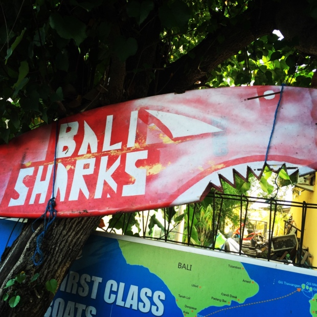 SharksOne