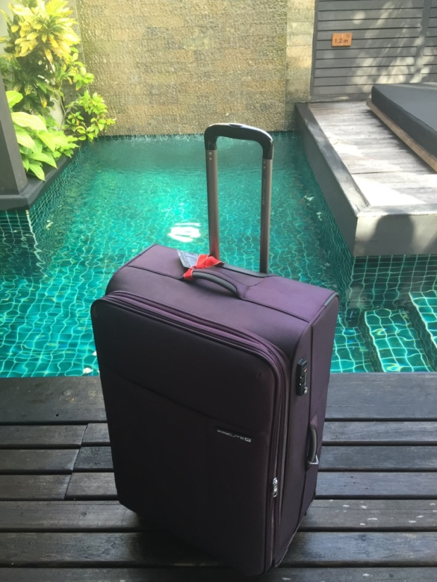 My new luggage enjoyed lounging around the private pool of my one-bedroom suite almost as much as I did.