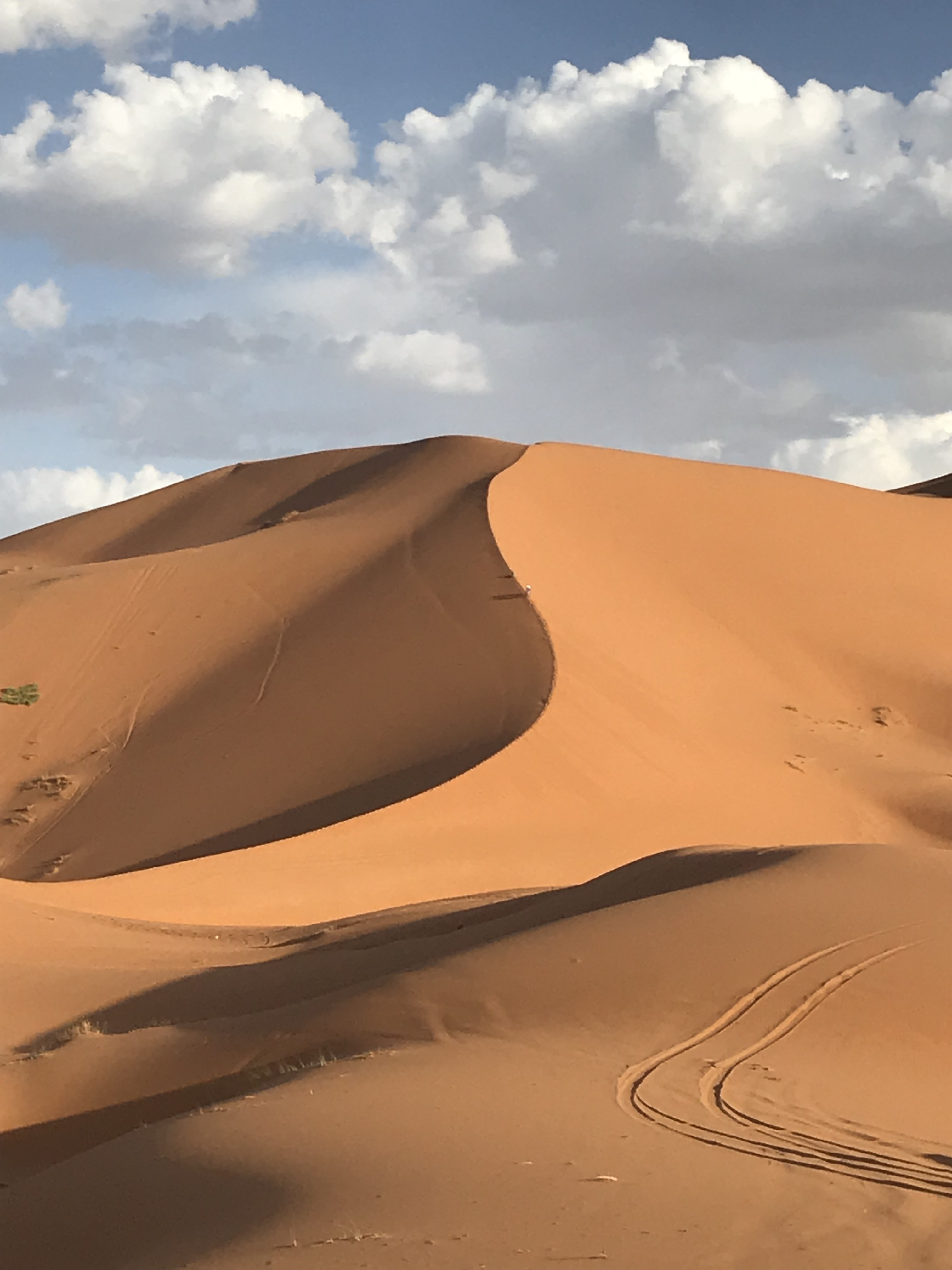 desert center single girls Top places to visit in dubai, united arab emirates: see tripadvisor's 4,23,690 traveller reviews and photos of dubai attractions.